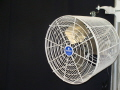 Where to rent FAN, TENT WHITE 12 in Conyers GA